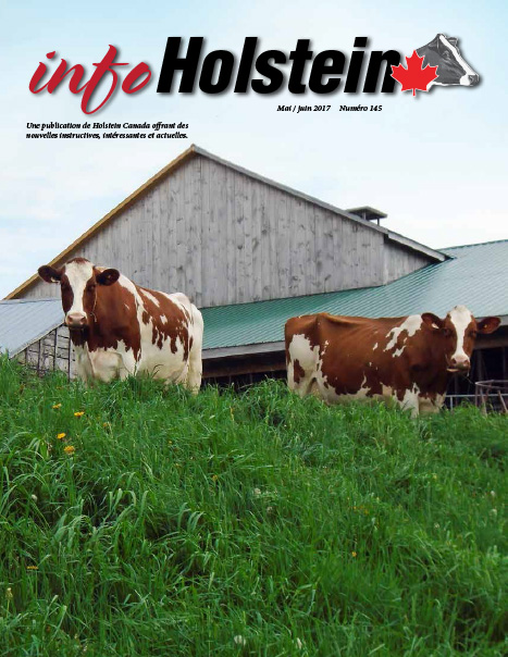 Info Holstein May/Jun. 2017