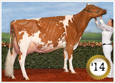 2014 Grand Champion Female