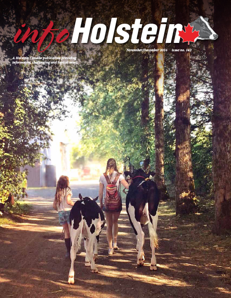 Info Holstein Nov/Dec 2016